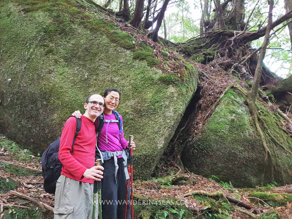 The area on Shiratani Unsuikyo Ravine trail that said to have inspired Princess Monoroke