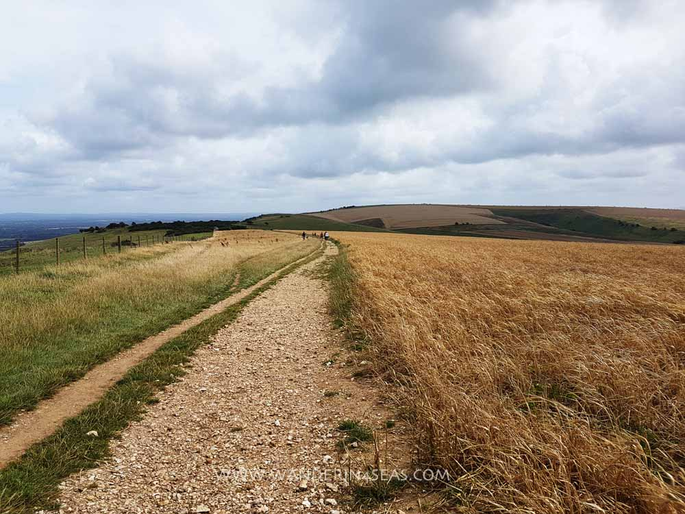 Wide and well maintained path