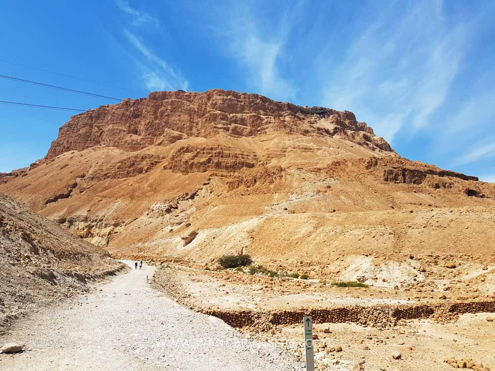 Day trip to Masada and Dead Sea