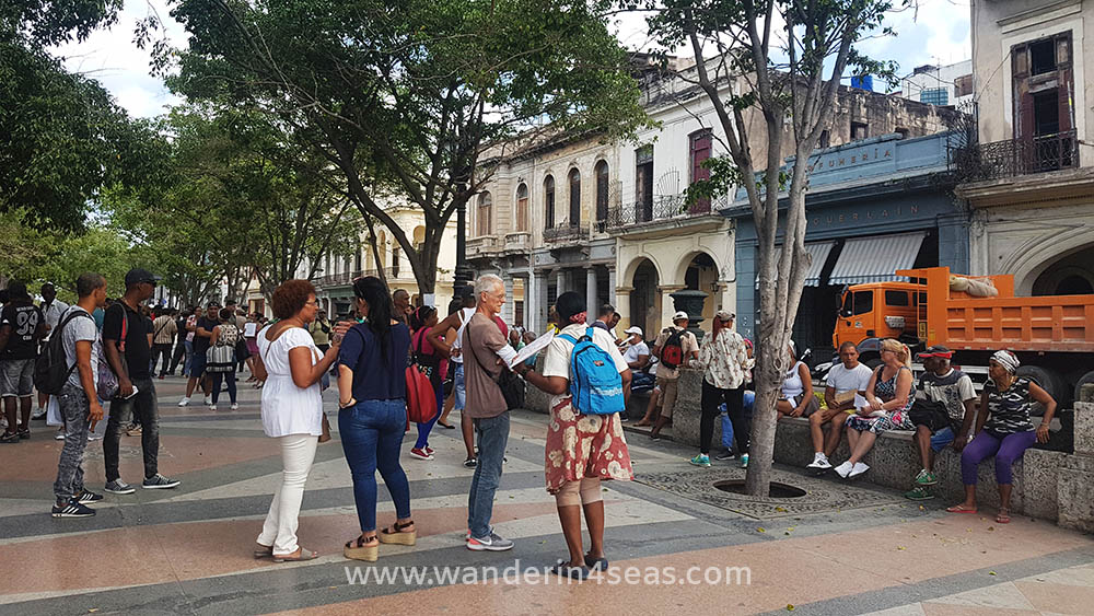 Pop up rental market at Paseo de Martí